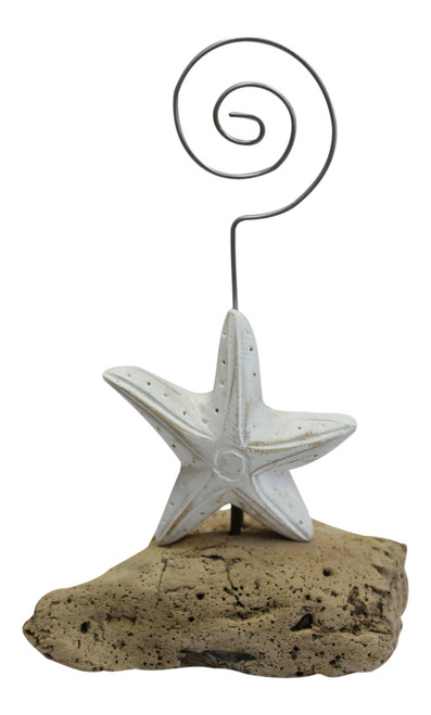 Carved Starfish on Driftwood Desktop Photo or Recipe Card Holder