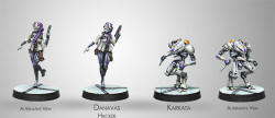 Infinity Danavas Hacker & Karkata Remove Ancillary Unit - ALEPH