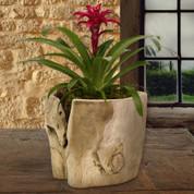 Teak Wood Vase