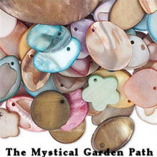1/4 Pound  Package Mother of Pearl Coin Drop Charm MIX   *