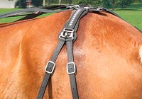 Fixed Hip Strap for Comfy Fit Harness