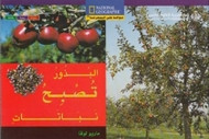 National Geographic: Level 10 - Seeds Grow Into Plants (Arabic-English)