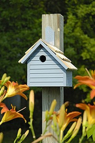 Heartwood Cape Cod Wren Bird House Blue Pickle