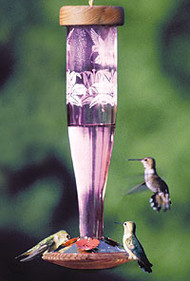 Schrodt Paradise Amethyst Hummingbird Lantern