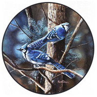 Glassmasters Blue Jays