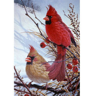 Glassmasters Windy Cardinals