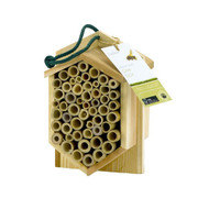 PineBush Bee Box