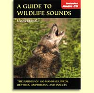 Stackpole Books Guide to Wildlife Sounds PB & CD