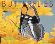 Willow Creek Press Butterflies 2013 Calendar