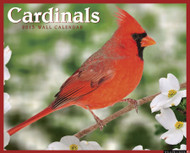 Willow Creek Press Cardinals 2013 Calendar