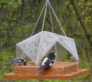 Songbird Essentials 9 x 9 Super Tray w/Cover Feeder