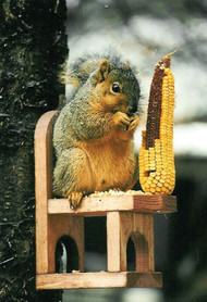 Songbird Essentials Squirrel Chair