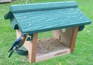 Songbird Essentials Bluebird Feeder