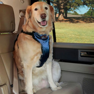 Solvit Deluxe Car Safety Harness, Ex Large 62407