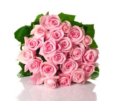 20 pink roses bunch bali florist shop 20 pink roses bunch image 1 mightylinksfo