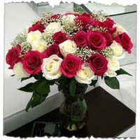 Red And White Rose Bunch 12