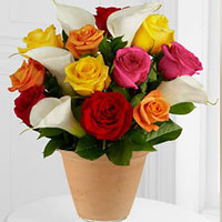 12 Mixed Roses And Calla Lily Pot