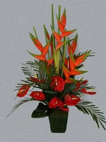 Heliconia And Anthurium In A Pot