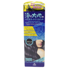 Brain Cosmos Ocean & Earth 100% Natural Japanese Hair Colour Treatment 200g Black Colour For Grey Hair Japan Import Made in Japan
