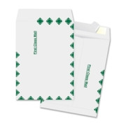 Business Source First Class Mail Envelope