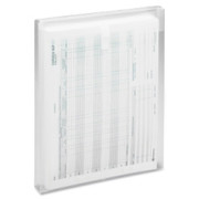 Smead 89670 Clear Poly Envelopes with Hook-and-Loop Closure