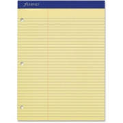Ampad Perforated 3HP Ruled Double Sheet Pads - 3