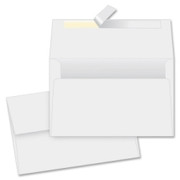 Quality Park Redi-Strip Specialty Envelope