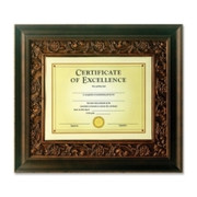 Burnes Document Frame - 4