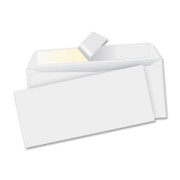 Business Source Business Envelope - 2