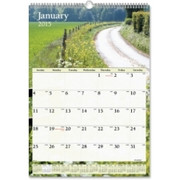 At-A-Glance Scenic Monthly Wall Calendar - 1