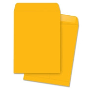 Business Source Catalog Envelope - 1