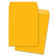 Business Source Catalog Envelope - 2