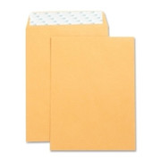 Business Source Catalog Envelope - 8