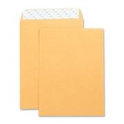 Business Source Catalog Envelope - 8