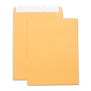 Business Source Catalog Envelope - 9
