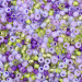 Lavender Fields Seed Bead Mix