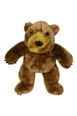 Brownie the Brown Grizzly