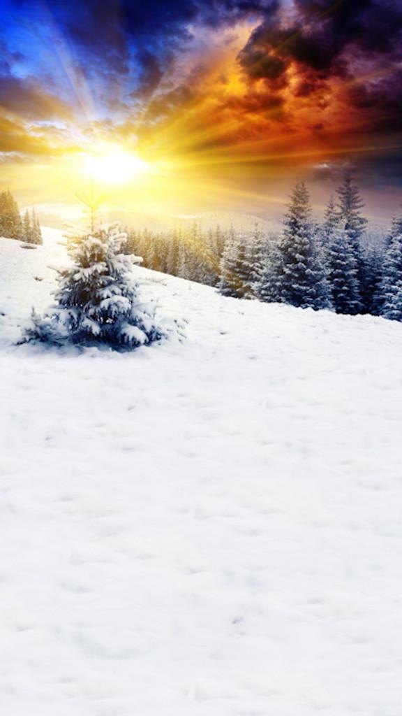 Christmas Sunrise Backdrop