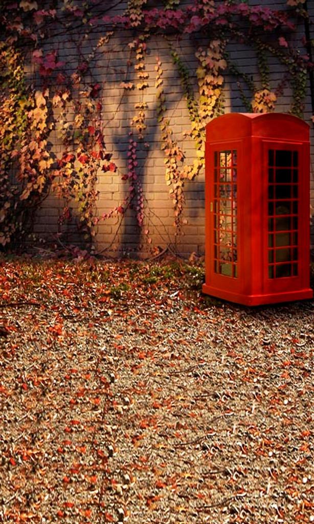 Autumn Ivy Backdrop