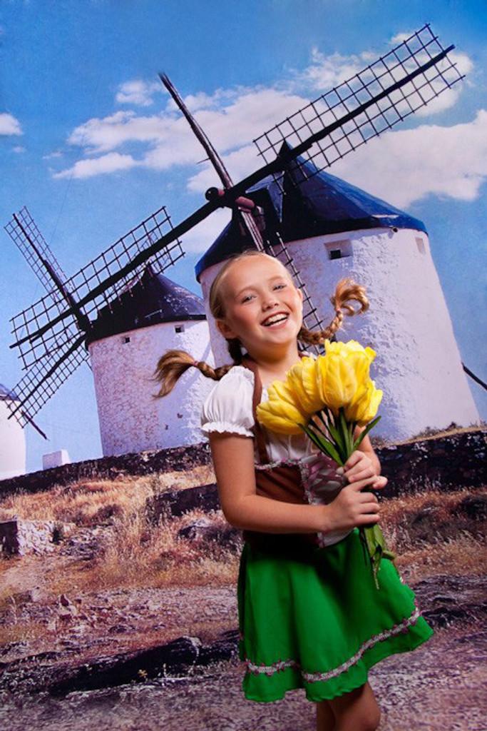 Old Dutch Windmills Backdrop