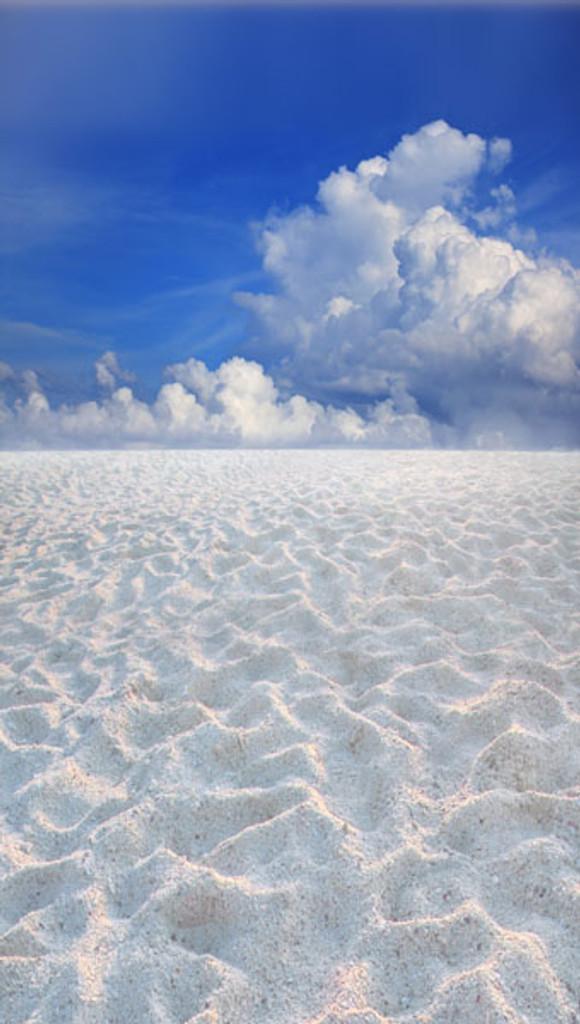 Sand Flats Backdrop