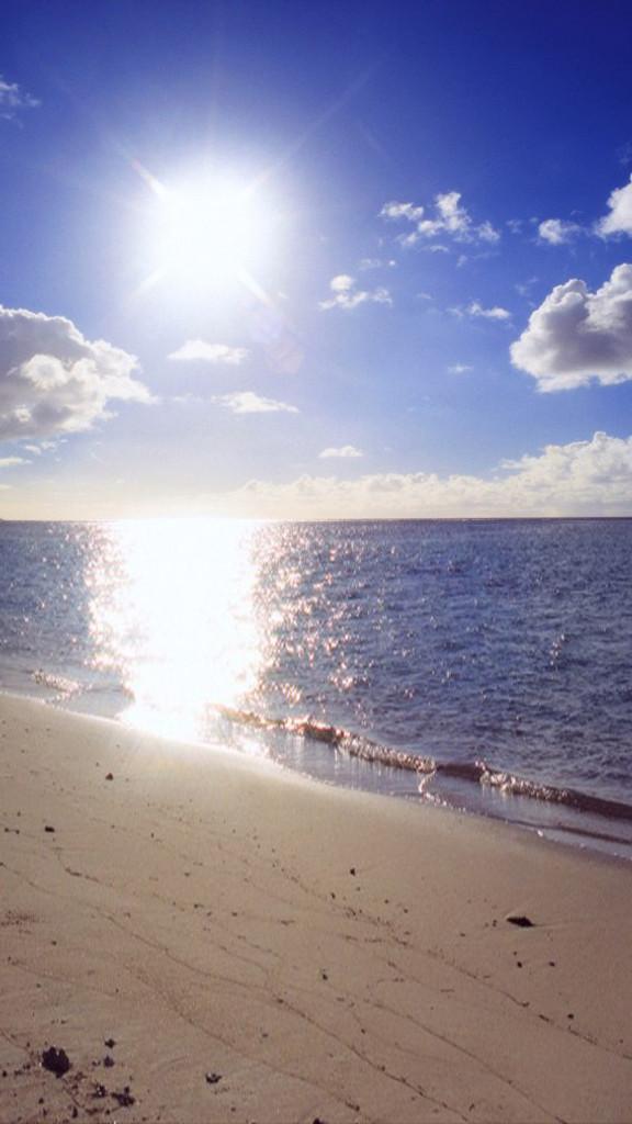 Seaside Shimmer Backdrop