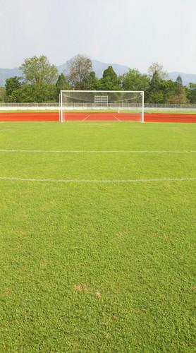 Soccer Backdrop