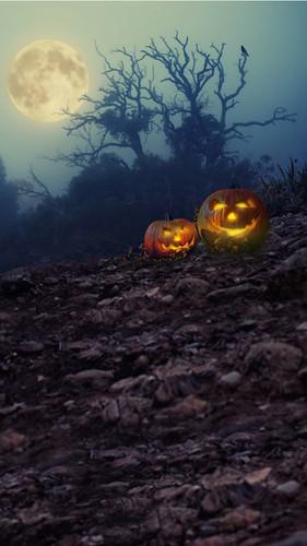 Moonbeam Trees with Jack-O-Lanterns Backdrop