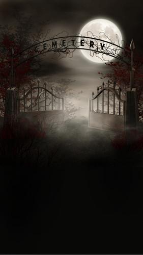Foggy Cemetery Backdrop