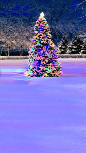 Glowing Tree Backdrop