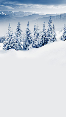 Snow Powdered Trees Backdrop