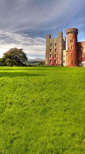 My Castle Backdrop