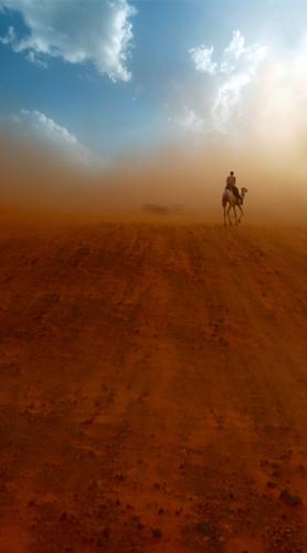 Desert Trek Backdrop