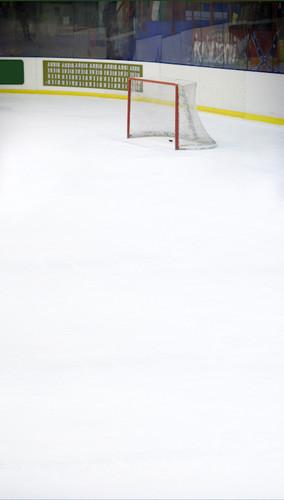 Hockey Rink Backdrop